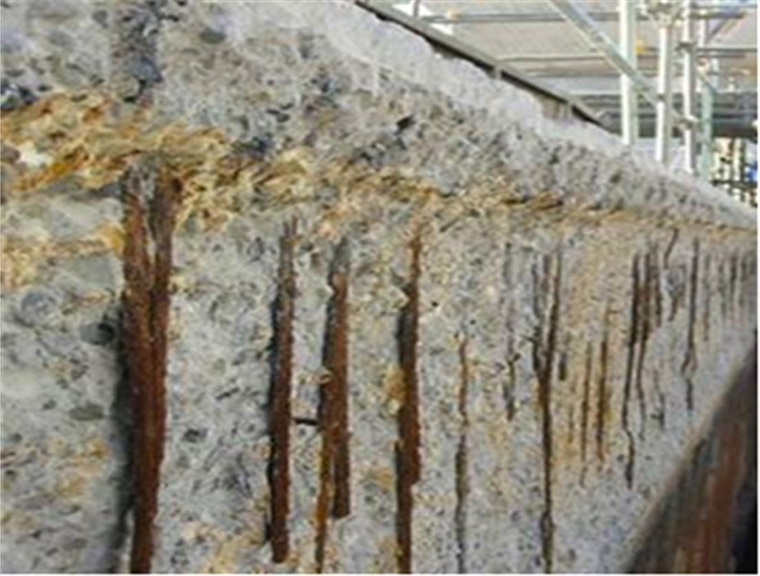 Photograph 1 Corrosion State Of Reinforcement After
